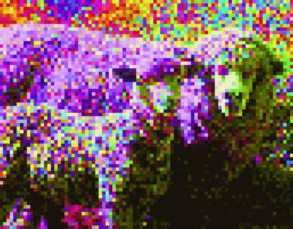 Und irgendwann hatte das Schaf keine Lust mehr auf Parallelrealitäten